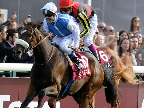 Solemia and Orfevre will do battle again on Sunday
