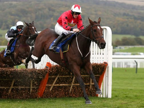 The New One: An intended runner at Warwick later this month