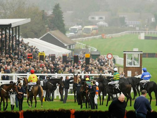 Plumpton: Fit for racing