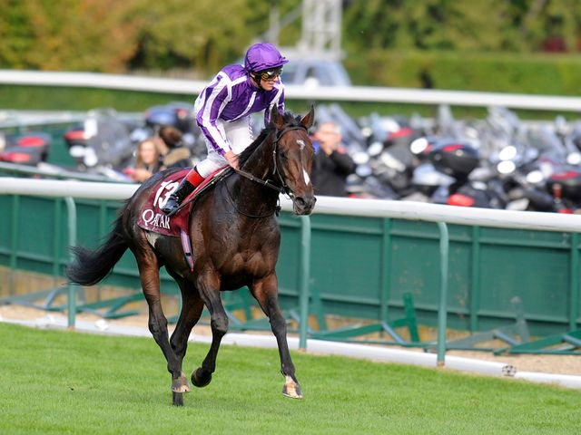 Camelot: Breeders' Cup the target