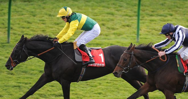Aaim To Prosper: Targeting the Cesarewitch