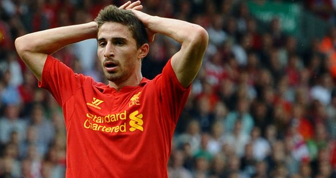 Fabio Borini: Also wants to find some 'stability' at Liverpool after several moves