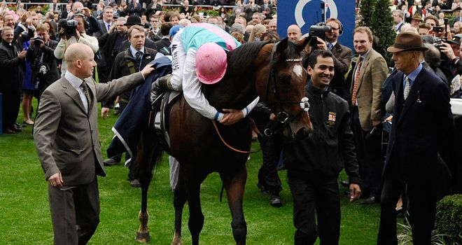 Frankel: Took his unbeaten record to 14 races before being retired in the wake of victory in the QIPCO Champion Stakes
