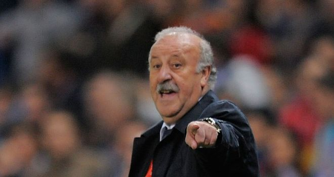 Vicente del Bosque: Felt Spain should have scored more goals