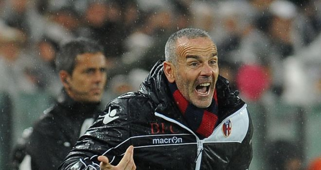 Stefano Pioli: The Bologna boss has played down rumours linking him with the Italy job