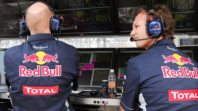 Red Bull chiefs Newey and Horner have welcomed the new tie-up