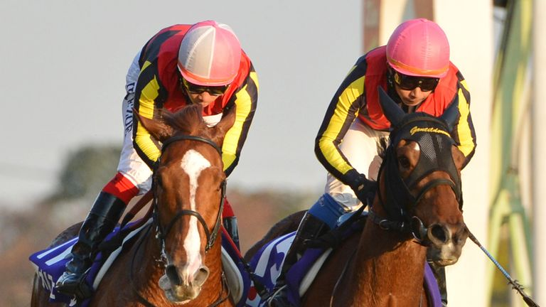 Gentildonna (r): Gets the better of Orfevre in thrilling Japan Cup
