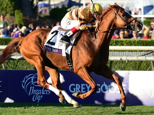 Wise Dan: GC's winner of the Breeders' Cup Mile