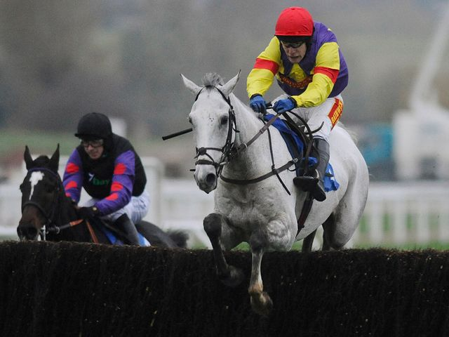 Grands Crus: Strong Paddy Power Gold Cup favourite