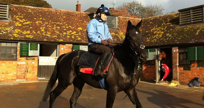 Black Thunder: Alex rode the horse for Sky Sports News recently