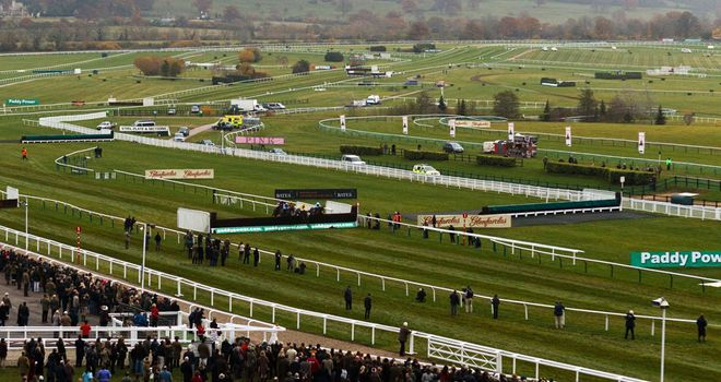 Cheltenham: Cross-country race goes ahead