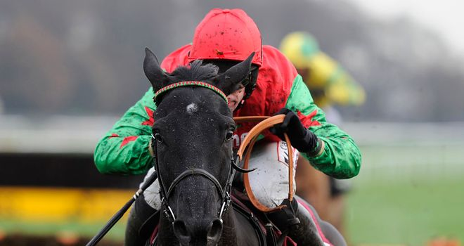 Balder Succes: Ran out a ready winner at Haydock