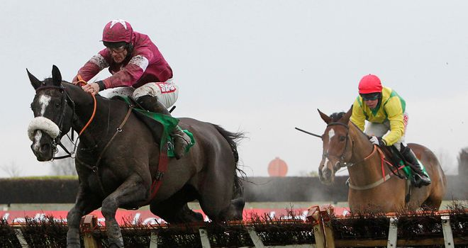 Don Cossack (L): Will head for the Navan Novice Hurdle on Sunday week
