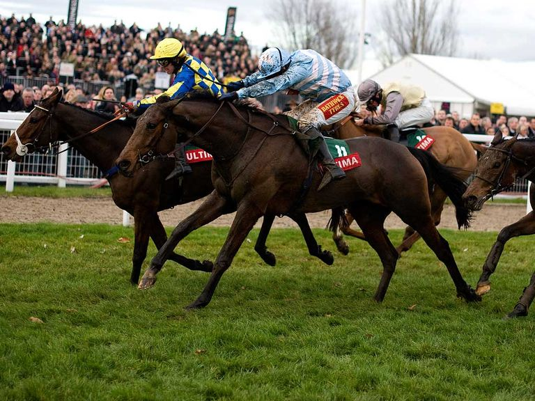 Goulanes: One of the Pipe big guns for Cheltenham