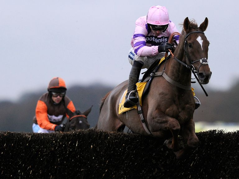 Silvinaco Conti has seen his odds cut for the Gold Cup