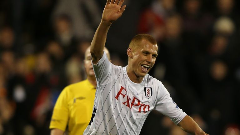 Steve Sidwell: Celebrates his goal against Newcastle