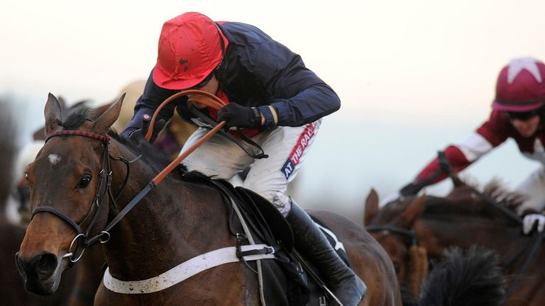Bobs Worth: Should be favourite for the Cheltenham Gold Cup