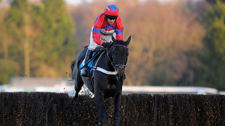 Sprinter Sacre: Cheltenham next Saturday?