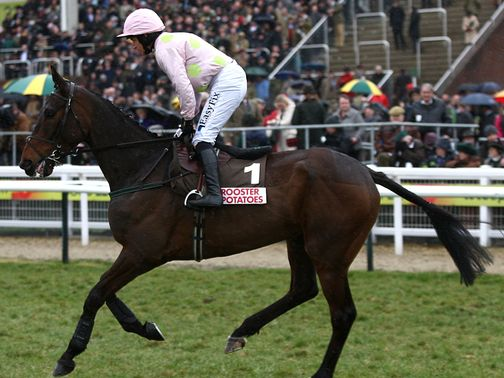 Arvika Ligeonniere: Looking to enhance his Arkle claims