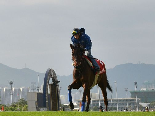 Cirrus Des Aigles: Will not run in Hong Kong