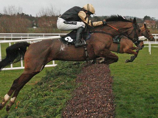 Tidal Bay: Ruled out of the Grand National