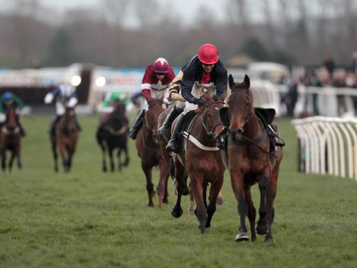 Bobs Worth: Can win the Cheltenham Gold Cup