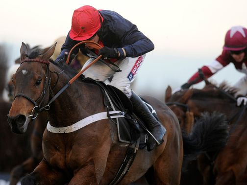 Bobs Worth: Ran out a brilliant winner of the Hennessy Gold Cup