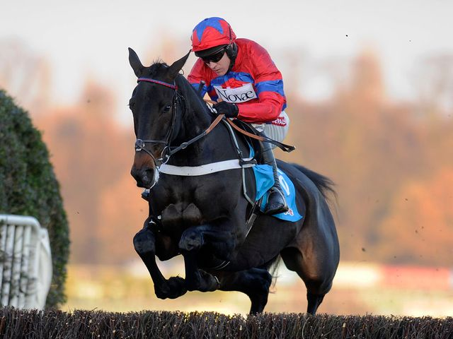 Sprinter Sacre: Imperious in victory at Sandown