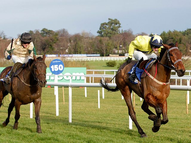 Anonis: Runs at Clonmel on Thursday