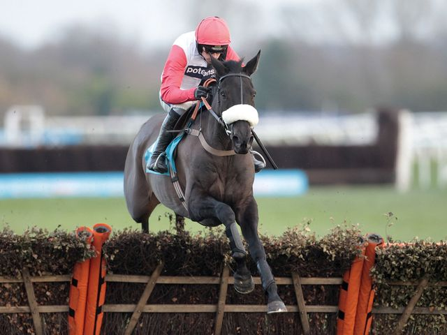 Big Buck's: Landed the Long Distance Hurdle for a fourth year