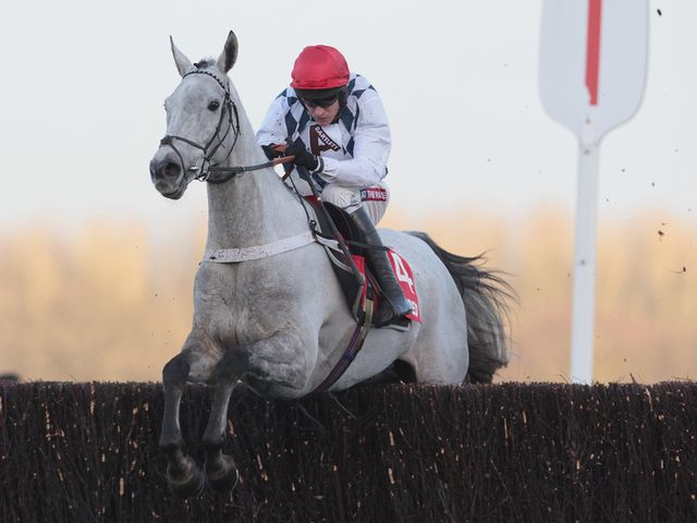 Simonsig: Impressed on his chasing debut