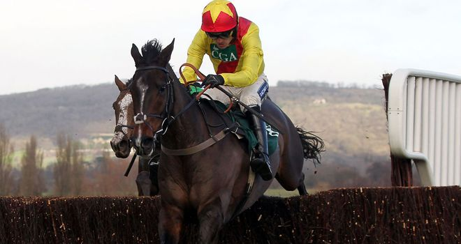 Shooters Wood: Wins again at Cheltenham