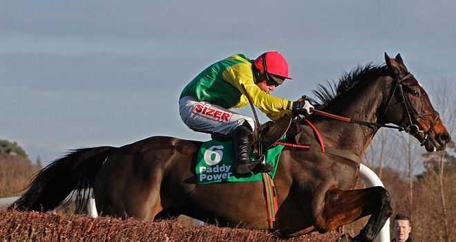 Sizing Europe has options ahead of the Cheltenham Festival