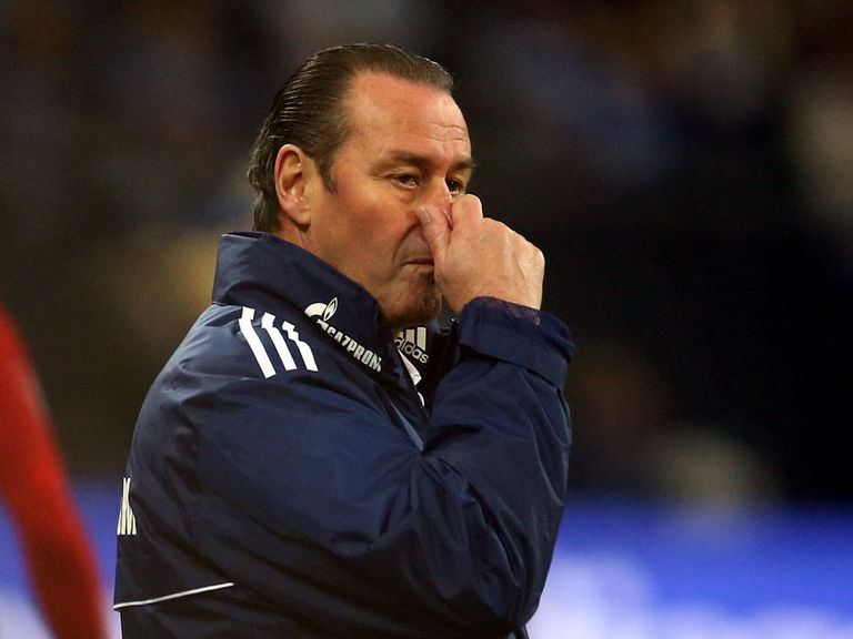 Huub Stevens: Sacked by Schalke after latest defeat