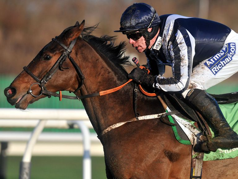 Countrywide Flame: Gets the vote in the Aintree Hurdle