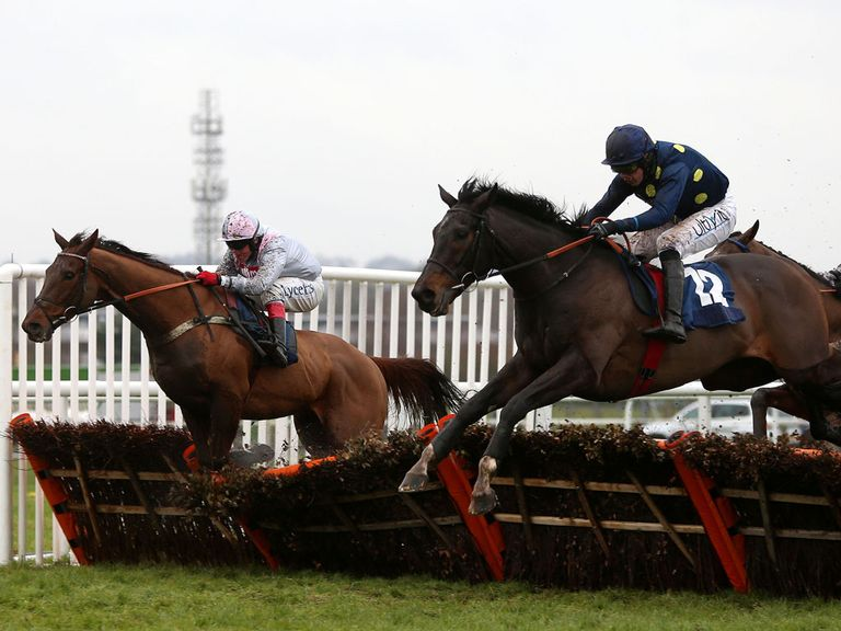 Poet: Big price at 40/1 for the Betfair Hurdle