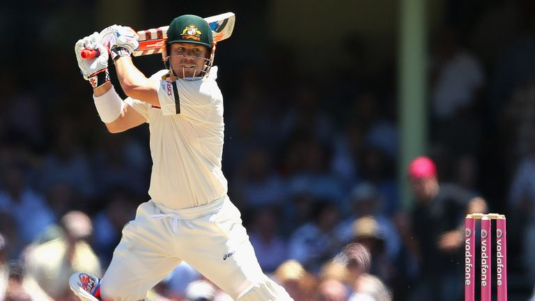 Warner: in good shape until he played a rash shot