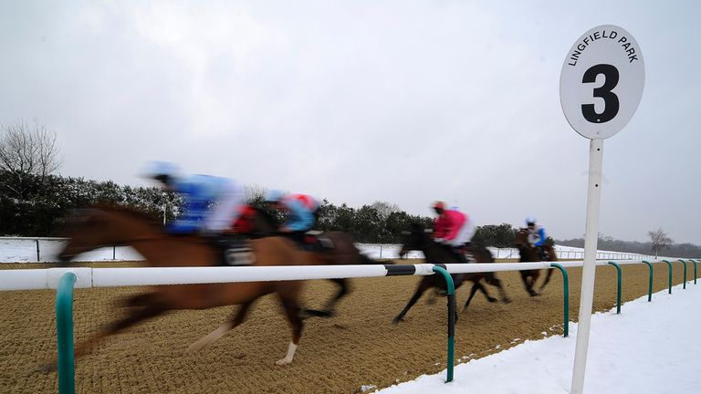 Lingfield: Card has beaten the snow again