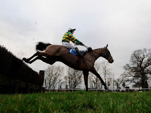 Taunton: Looks main hope for turf racing on Saturday