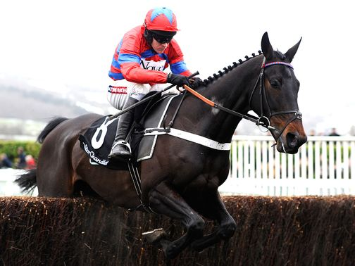 Sprinter Sacre: Faces six rivals