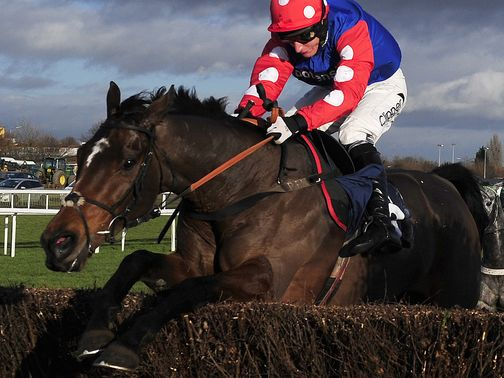 Rocky Creek: Puts Cheltenham credentials on the line