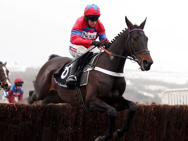 Sprinter Sacre: A facile winner of the Victor Chandler Chase