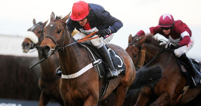Bobs Worth: Out of Saturday's Cheltenham contest
