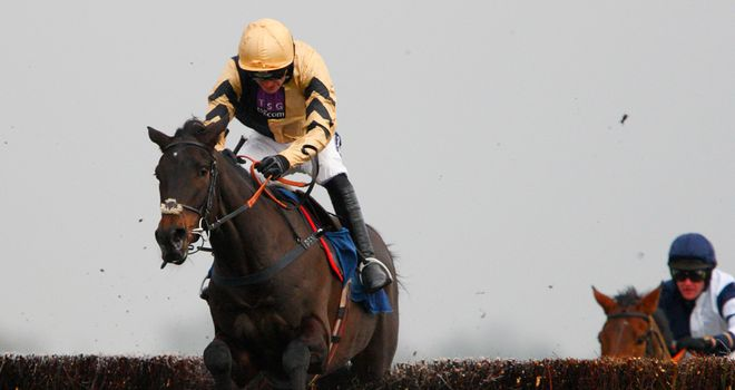 Fago: Impressed on his debut over fences and entered in the Jewson