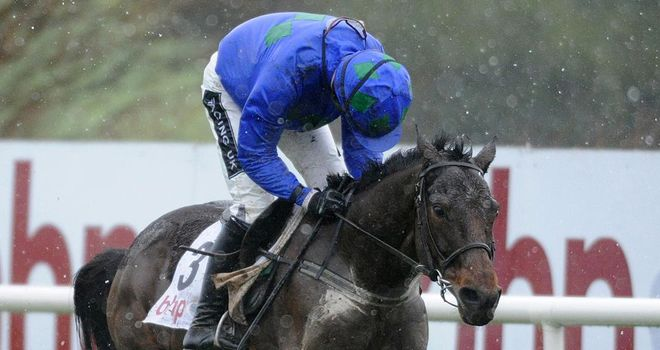 Hurricane Fly: Ruby Walsh expects him to take all the beating