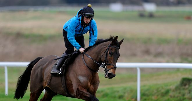 Imperial Commander: Could have another racecourse gallop