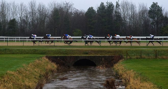 Horses in action on the all-weather at Lingfield