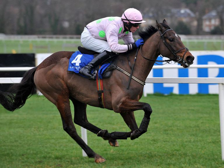 Fatcatinthehat: Won at Leopardstown
