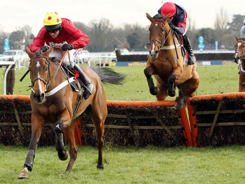 Ericht: Coral Cup hopeful