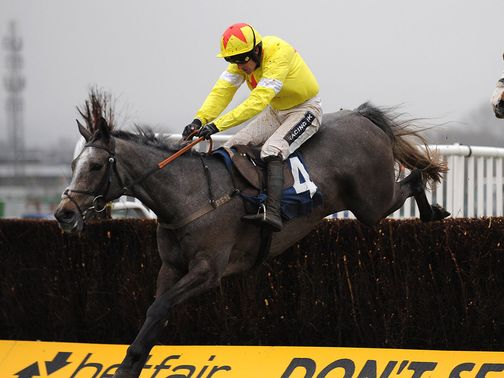 Unioniste: One of three entries from Paul Nicholls